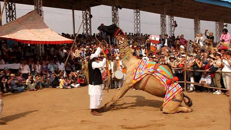 Pushkar Camel Fair, Rajasthan, India