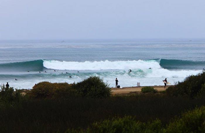 lowertrestlessurf